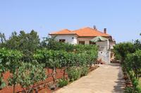 Apartmány u moře Ugljan - 8257