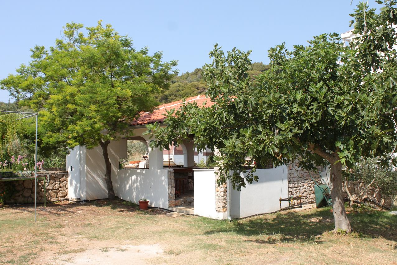Ferienwohnung im Ort Dobropoljana (Paaman), Kapazität 4+1 (1012349), Nevidane, Insel Pasman, Dalmatien, Kroatien, Bild 24