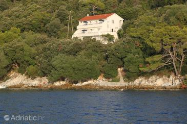 Ubli, Lastovo, Property 8355 - Apartments by the sea.