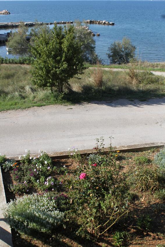 Ferienwohnung Studio Appartment im Ort Neviane (Paaman), Kapazität 2+1 (1911707), Nevidane, Insel Pasman, Dalmatien, Kroatien, Bild 23