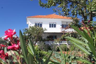 Ugljan, Ugljan, Property 8420 - Apartments and Rooms by the sea.