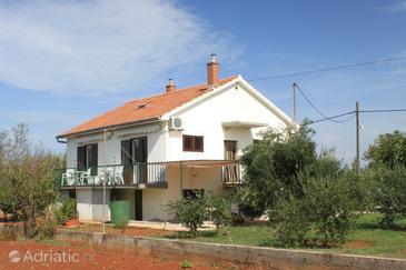 Guduće, Ugljan, Property 8492 - Apartments with rocky beach.