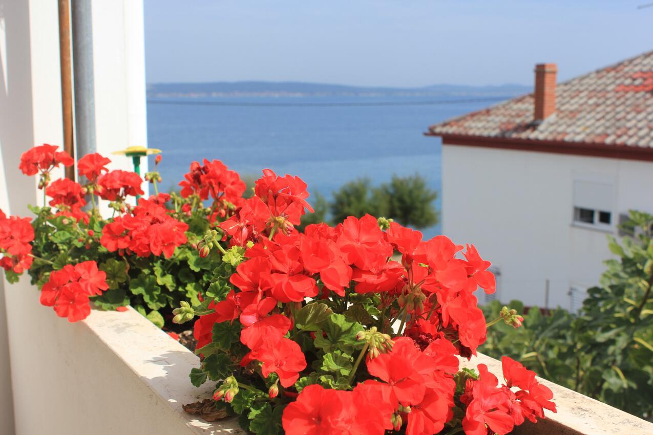 Ferienwohnung im Ort Kali (Ugljan), Kapazität 4+1 (1012461), Kali, Insel Ugljan, Dalmatien, Kroatien, Bild 28