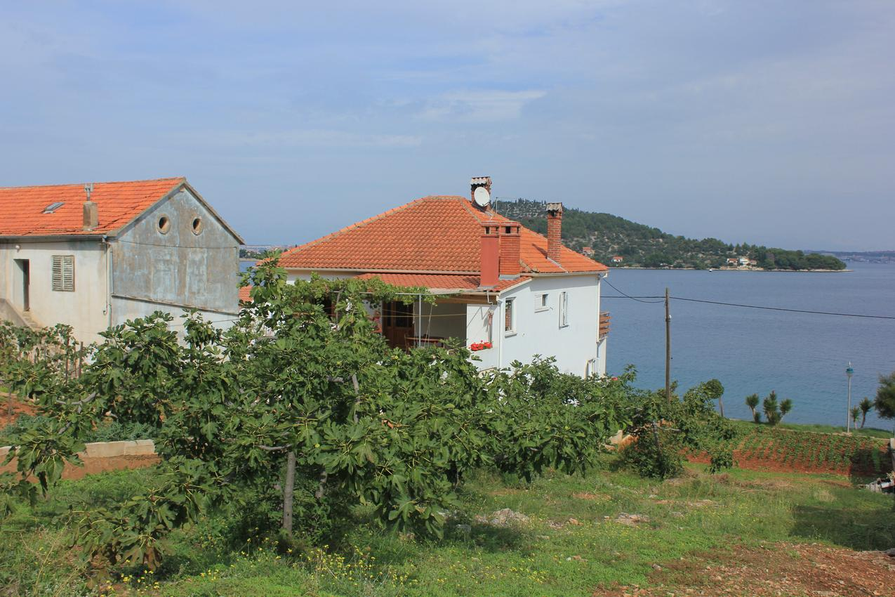 Ferienwohnung im Ort Kali (Ugljan), Kapazität 2+1 (1012462), Kali, Insel Ugljan, Dalmatien, Kroatien, Bild 21