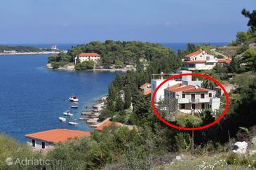 Vis, Vis, Property 8524 - Apartments near sea with rocky beach.