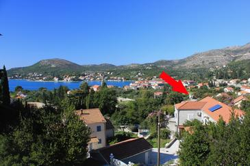 Slano, Dubrovnik, Property 8540 - Apartments with pebble beach.