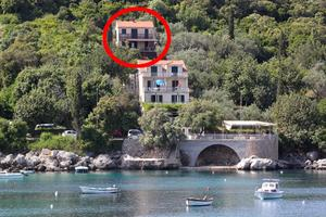 Apartments by the sea Molunat, Dubrovnik - 8550