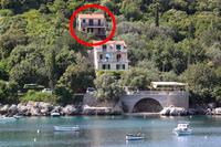 Apartments by the sea Molunat (Dubrovnik) - 8550