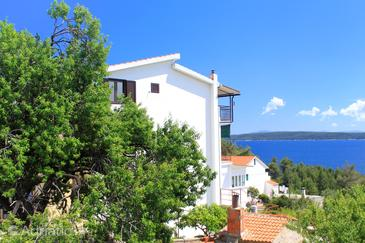 Zavala, Hvar, Property 8784 - Apartments and Rooms near sea with pebble beach.