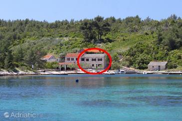 Šćedro - Uvala Mostir, Hvar, Property 8800 - Apartments and Rooms near sea with pebble beach.