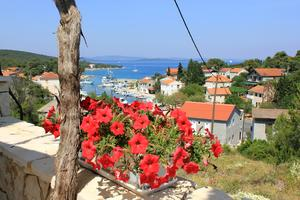 Holiday apartments Žman (Dugi otok) - 887