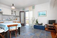 Apartmány u moře Sali (Dugi otok) - 895