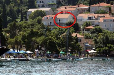 Cavtat, Dubrovnik, Property 8981 - Apartments and Rooms by the sea.