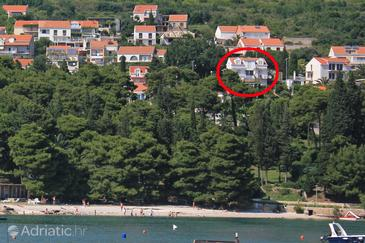 Mlini, Dubrovnik, Property 8991 - Apartments with pebble beach.