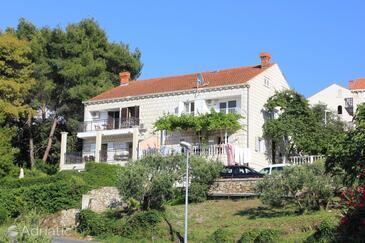 Cavtat, Dubrovnik, Objekt 9041 - Apartmani u Hrvatskoj.