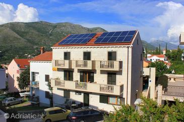 Cavtat, Dubrovnik, Property 9052 - Apartments in Croatia.