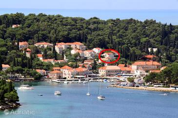 Cavtat, Dubrovnik, Property 9068 - Apartments by the sea.
