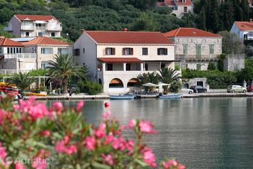 Zaton Mali, Dubrovnik, Property 9087 - Apartments and Rooms by the sea.
