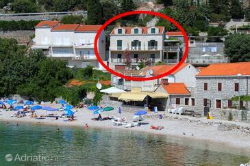 Štikovica, Dubrovnik, Property 9110 - Apartments near sea with pebble beach.