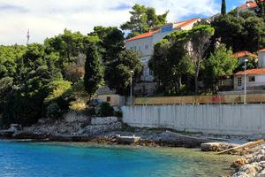 Apartments by the sea Medvinjak (Korcula) - 9268