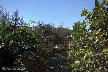 Terrace 2  view  - A-9423-a