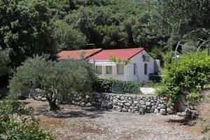 Seaside holiday house Cove Velika Prapratna (Pelješac) - 9486