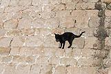 Detail stadsmuren Dubrovnik