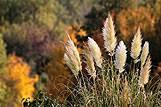 Sve boje jeseni, Hrvatska