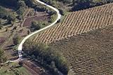 Pejsaž vinograda na rivieri Osrednja Istra